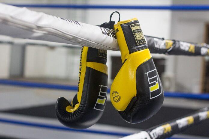 Σεμινάριο προπονητών επαγγελματικής πυγμαχίας